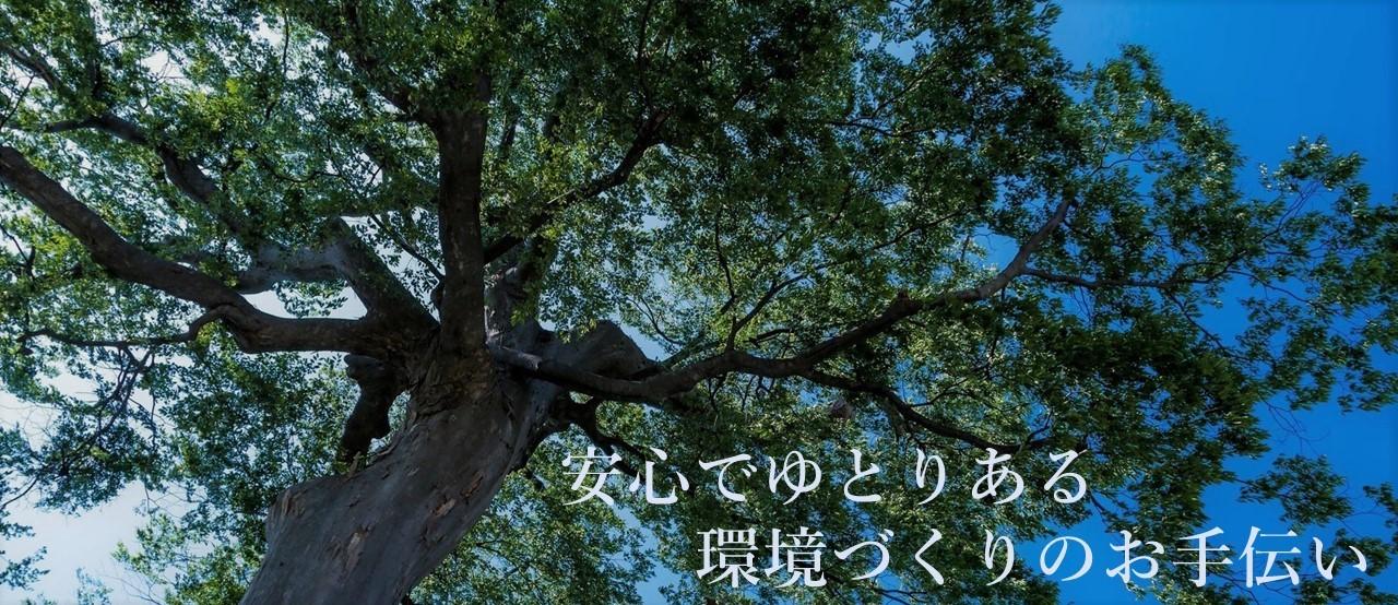 弊社イメージ 大樹
